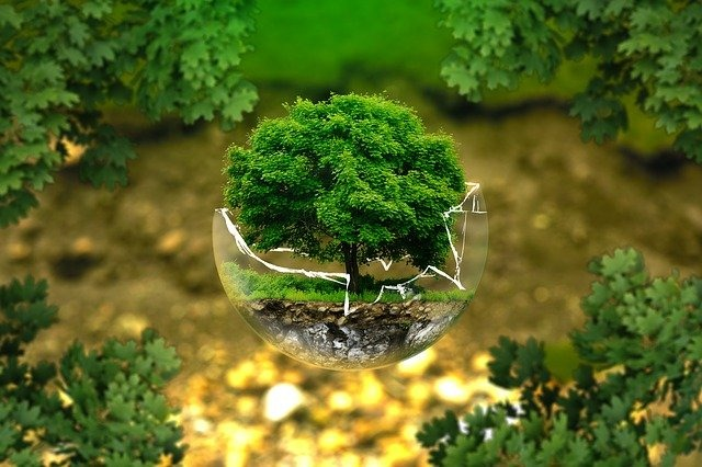 In search of true sustainability